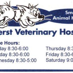 Amherst Veterinary Hospital