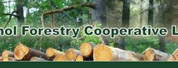 Athol Forestry Co-op Ltd.